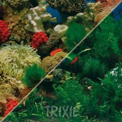 Tło do akwarium dwustronne Trixie 30 cm x 15 m, wzór 1