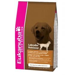 Eukanuba dla psów rasy Labrador Retriever