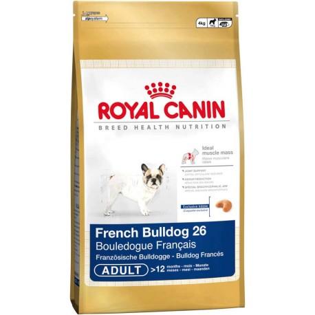 French Bulldog 26 - 1kg - psy dorosłe rasy Buldog Francuski, Kar