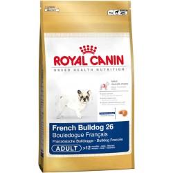 French Bulldog 26 - 4kg - psy dorosłe rasy Buldog Francuski, Kar