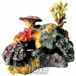Dekoracja - Rafa koralowa 32 cm