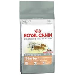 Starter 2kg, małe szczenięta i suki karmiące, karma Royal Canin
