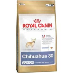 CHIHUAHUA 500g, psy dorosłe rasy chihuahua, karma Royal Canin