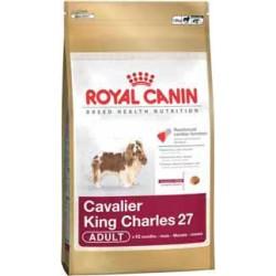 CAVALIER KING CHARLES 1,5kg, karma Royal Canin