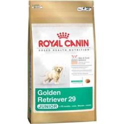 Golden Retriever Junior 12kg, psy młode, karma Royal Canin