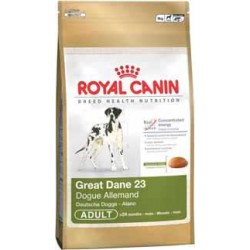 Great Dane 3kg, psy dorosłe dog niemiecki, karma Royal Canin
