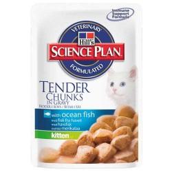 Kitten Ocean Fish - saszetka z rybą dla kotów dorosłych, karma H