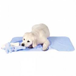 Zestaw dla szczeniaczka niebieski z kocykiem i ręcznikiem Trixie