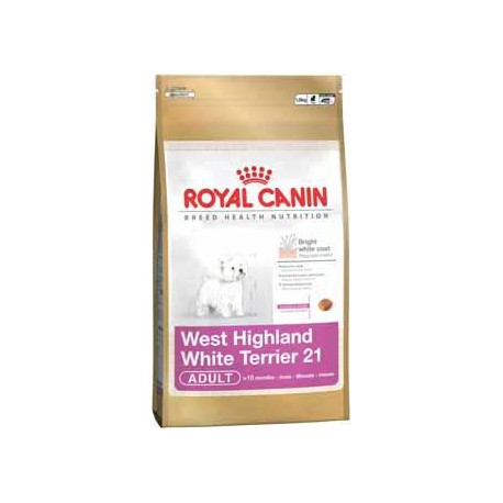 West Highland White Terrier 0,5kg, psy dorosłe, karma Royal Cani