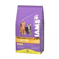 IAMS KITTEN & JUNIOR - kocięta oraz kotki ciężarne i karmiące