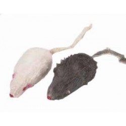 Myszka piszcząca Trixie